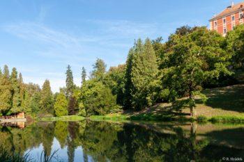 Opočno - zámecký park